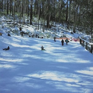 The Toboggan Run at TBJ, adjacent to the car park offers great family fun.